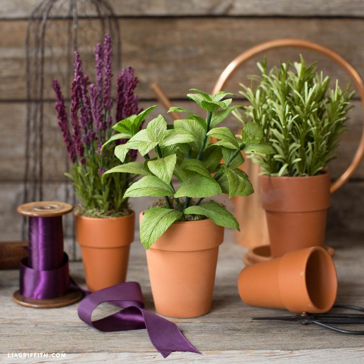 Lavender, Basil, Rosemary