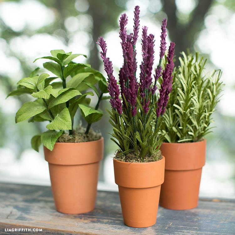 Crepe Paper Herb Garden