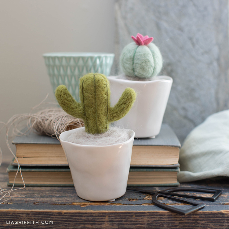 Needle-felted mini cactus plants in pots on books next to scissors