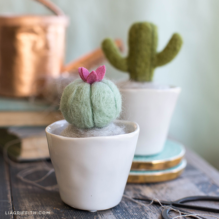 Needle-felted mini cactus plants in pots on table