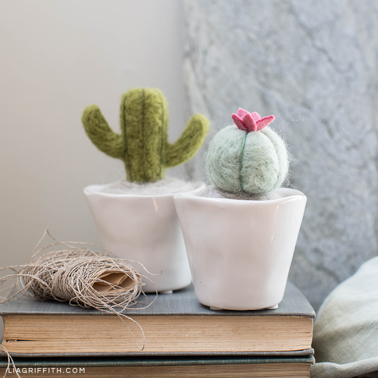 Needle-felted mini cactus plants in mini pots on book