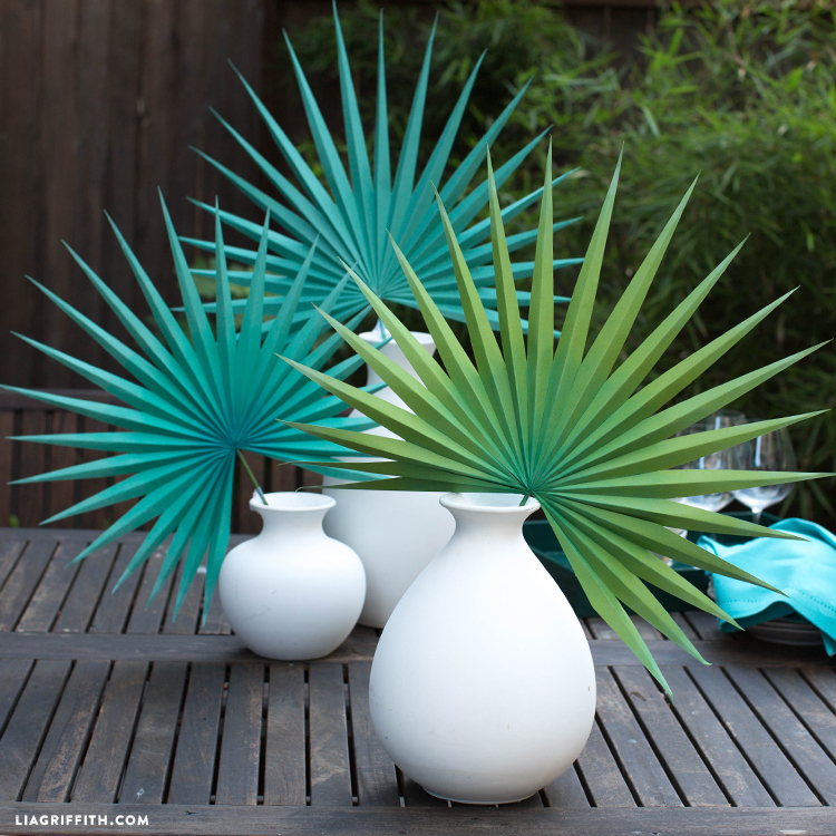 How To Paper Fan Palm
