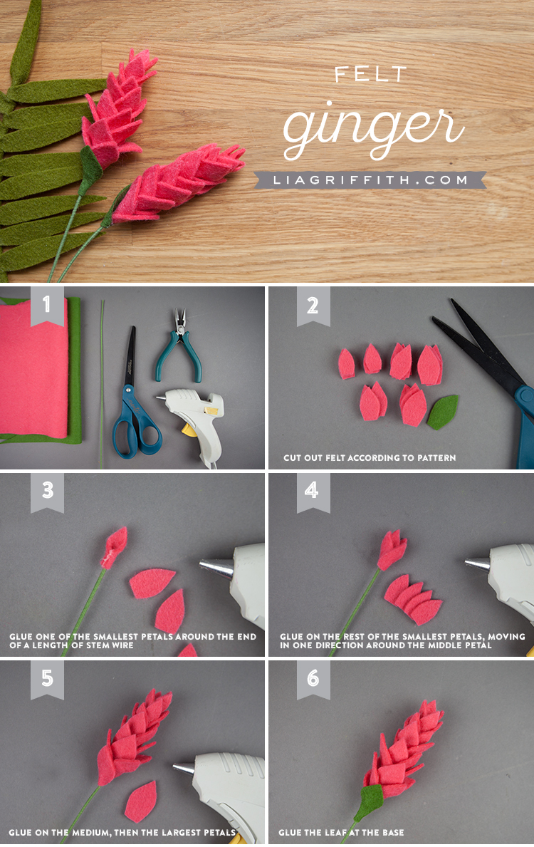 Felt Ginger Photo Tutorial