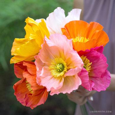 Live Tutorial: Advanced Crepe Paper Icelandic Poppy Flowers