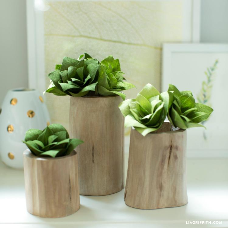 Crepe Paper Succulent Plants