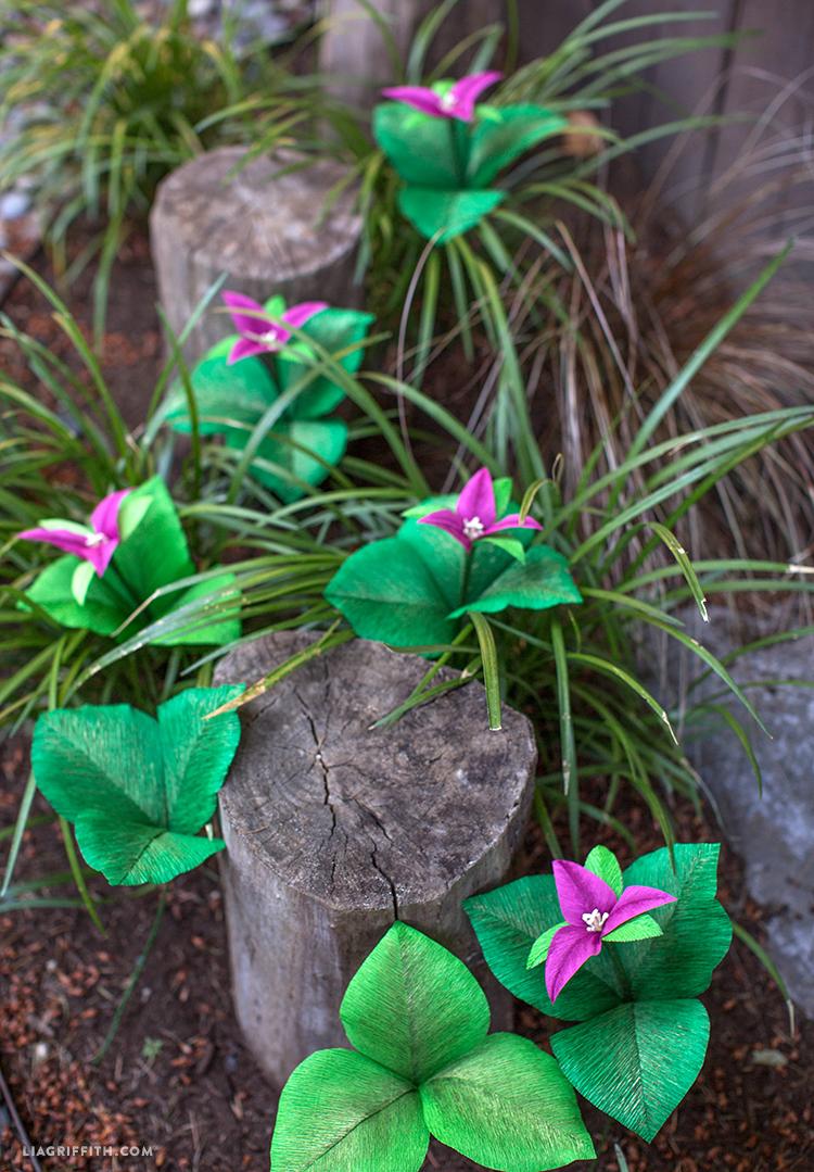 Paper Trillium Flower