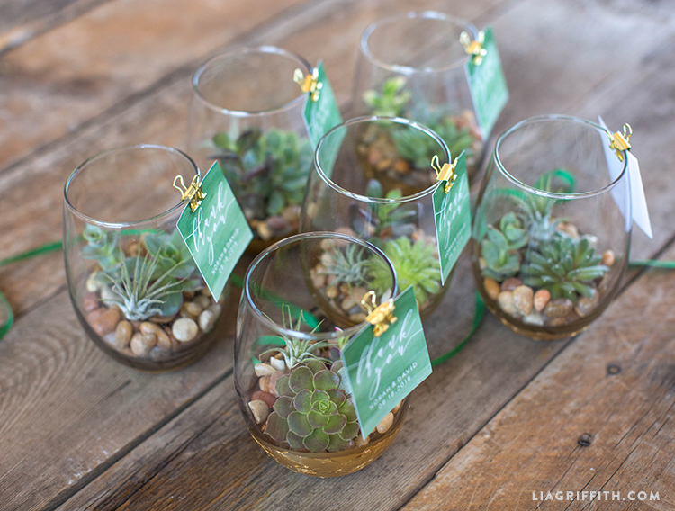 Watch Your Love Grow With These Diy Mini Terrarium Wedding Favors