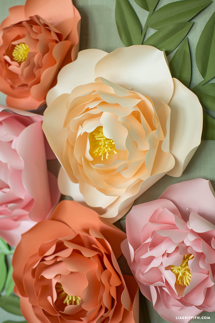 Paper Peonies Backdrop
