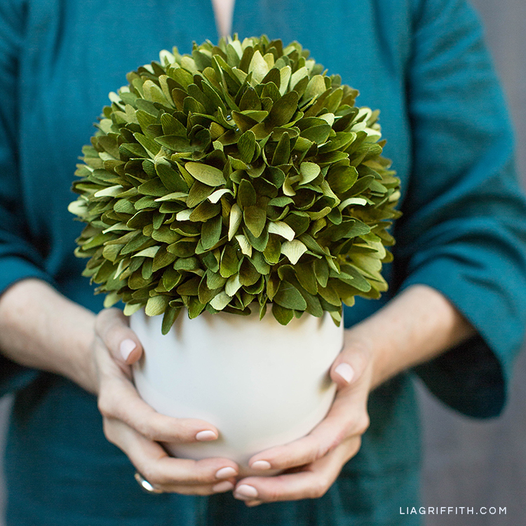 Woman holding crepe paper boxwood topiary plant