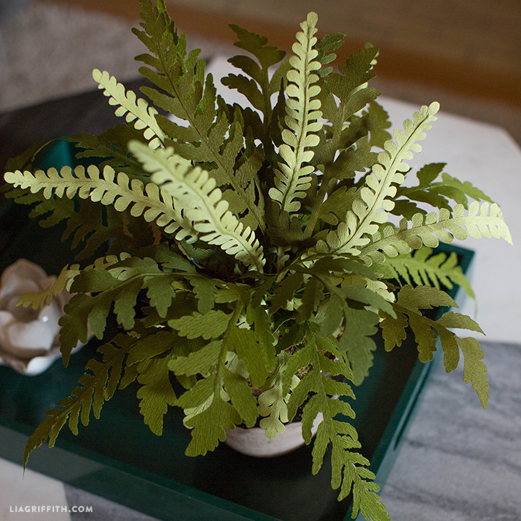 The top view of our double-sided crepe paper fern plant on a tray