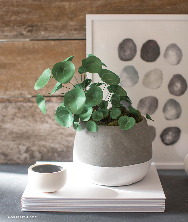 Chinese money plant (Pilea) in pot on stack of paper in front of wall art