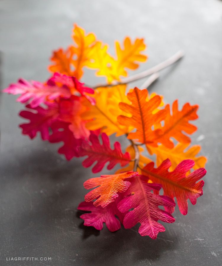 Pink, yellow, and orange ombré oak leaf branches