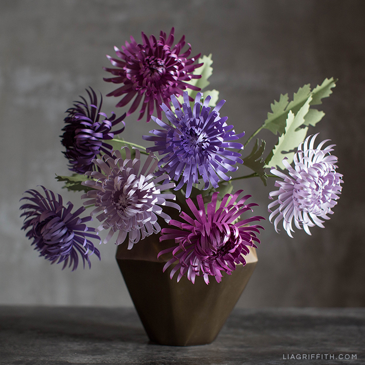 Purple paper spider chrysanthemums in vase