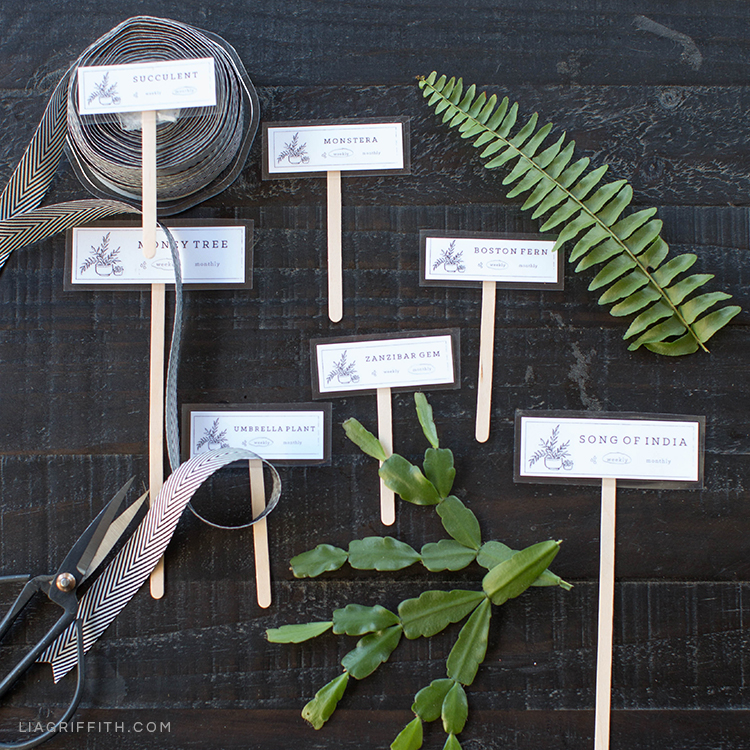 Printable plant markers next to plant leaves, ribbon, and scissors