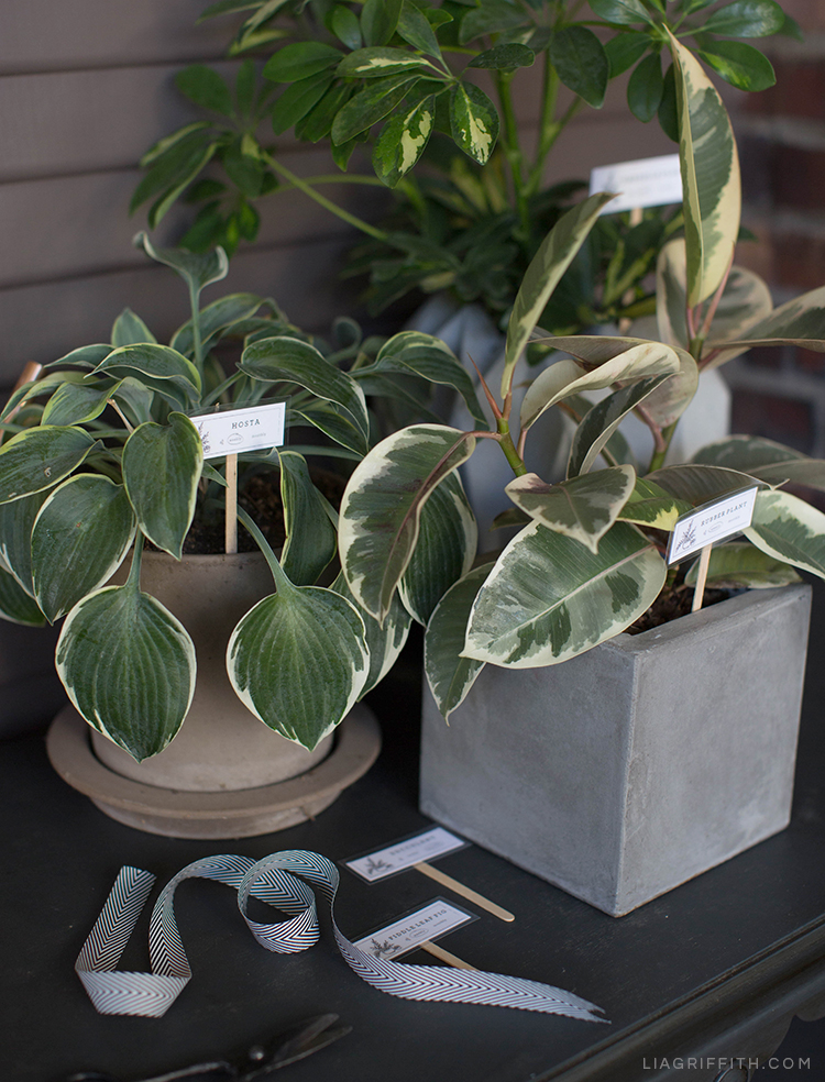 DIY plant markers in pots on table