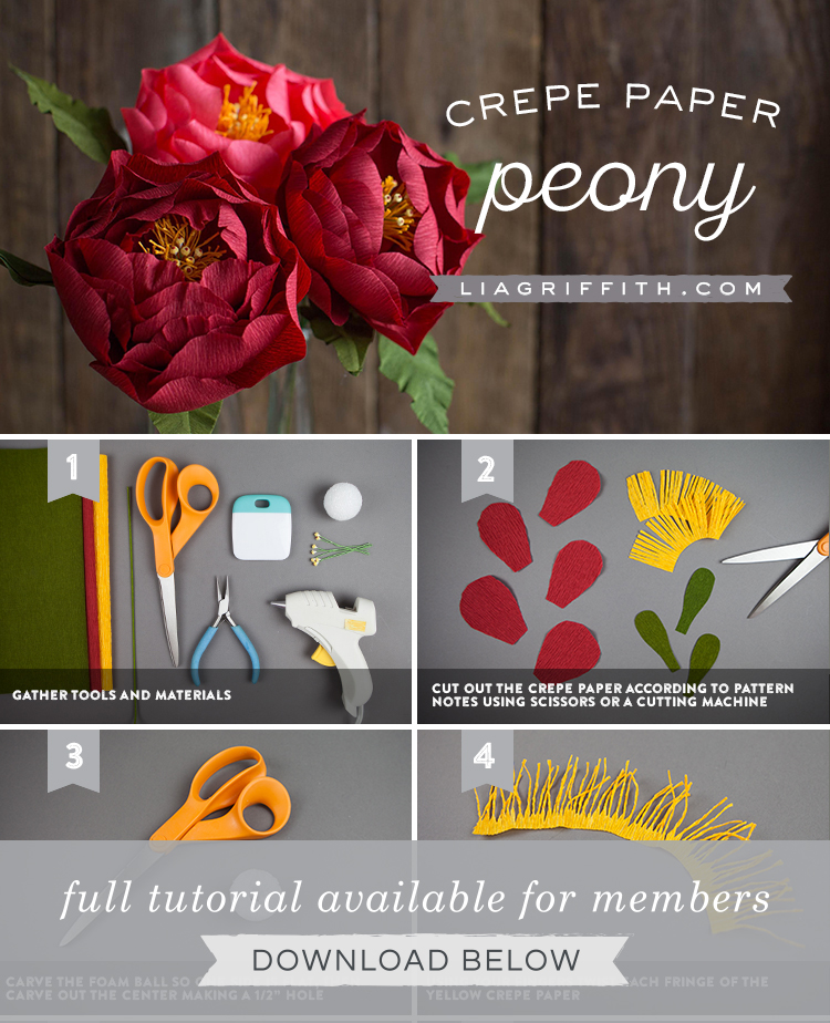 Gorgeous Red Crepe Paper Peony For Fall Lia Griffith
