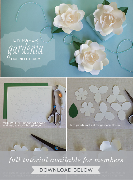 9ce17588f Frosted Paper Gardenia - Lia Griffith