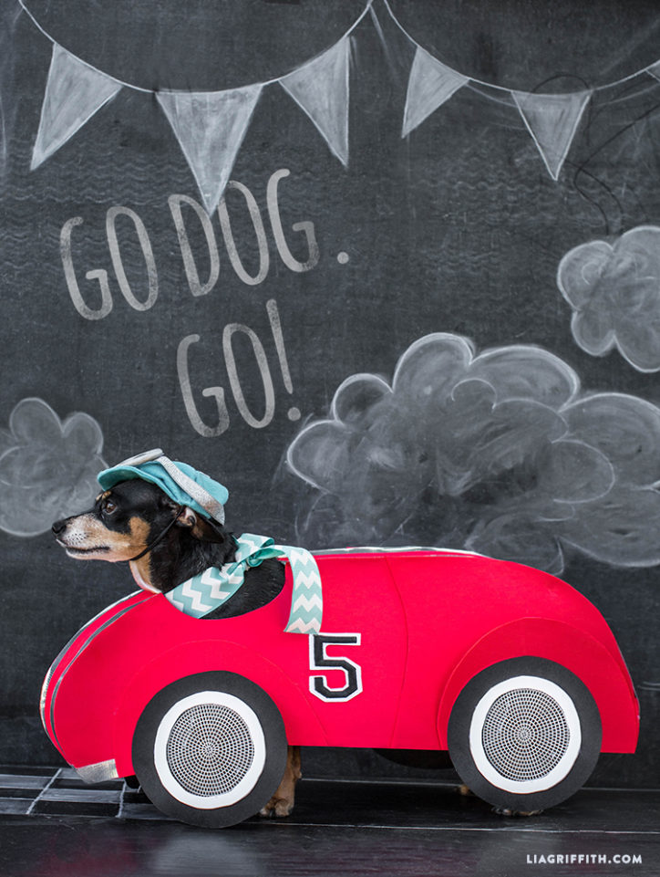 Race car dog costume for Halloween