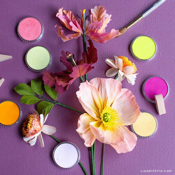 Color paper flowers with PanPastel pigments