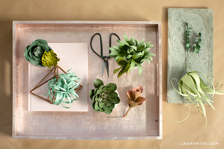 paper succulents and air plants on trays