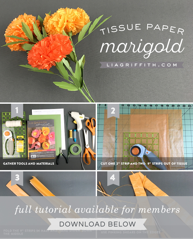 Tissue Paper Marigolds Lia Griffith