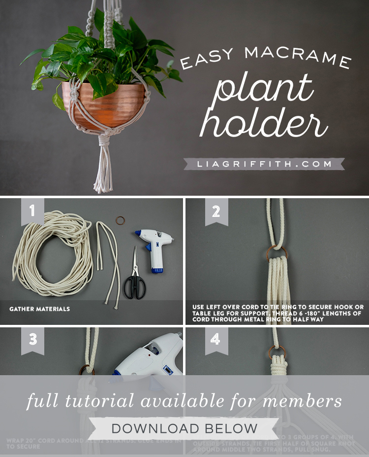 Braided Macrame Plant Holder Lia Griffith