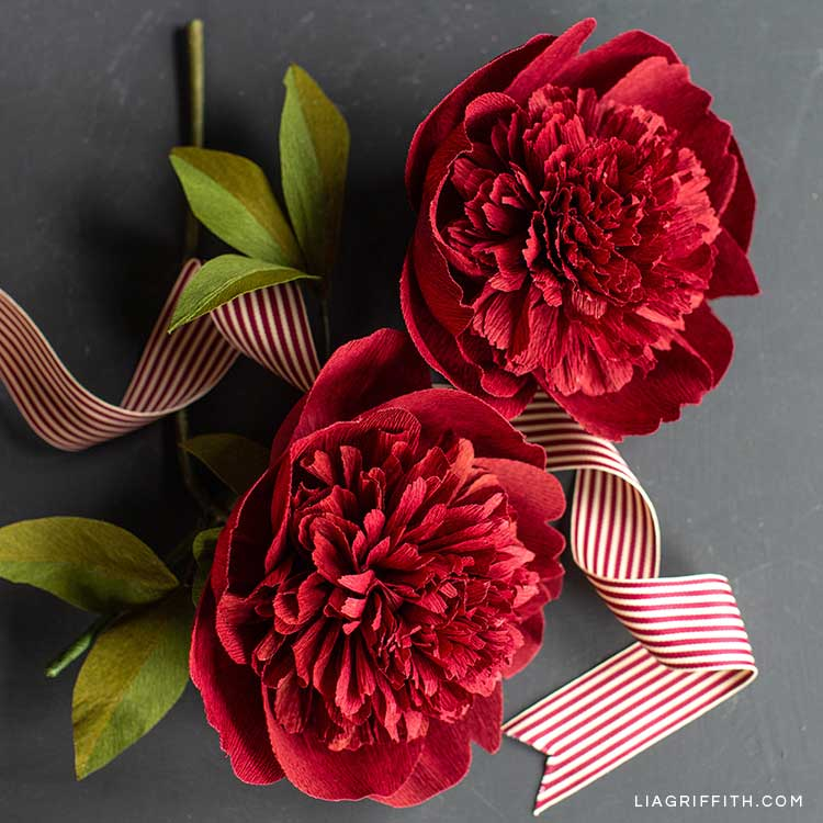 crepe paper red charm peony flowers with red and white ribbon