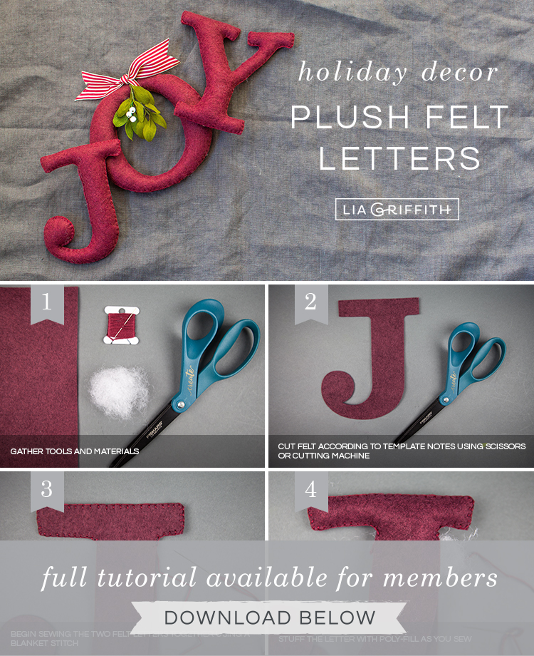 Photo tutorial for holiday décor felt letters by Lia Griffith