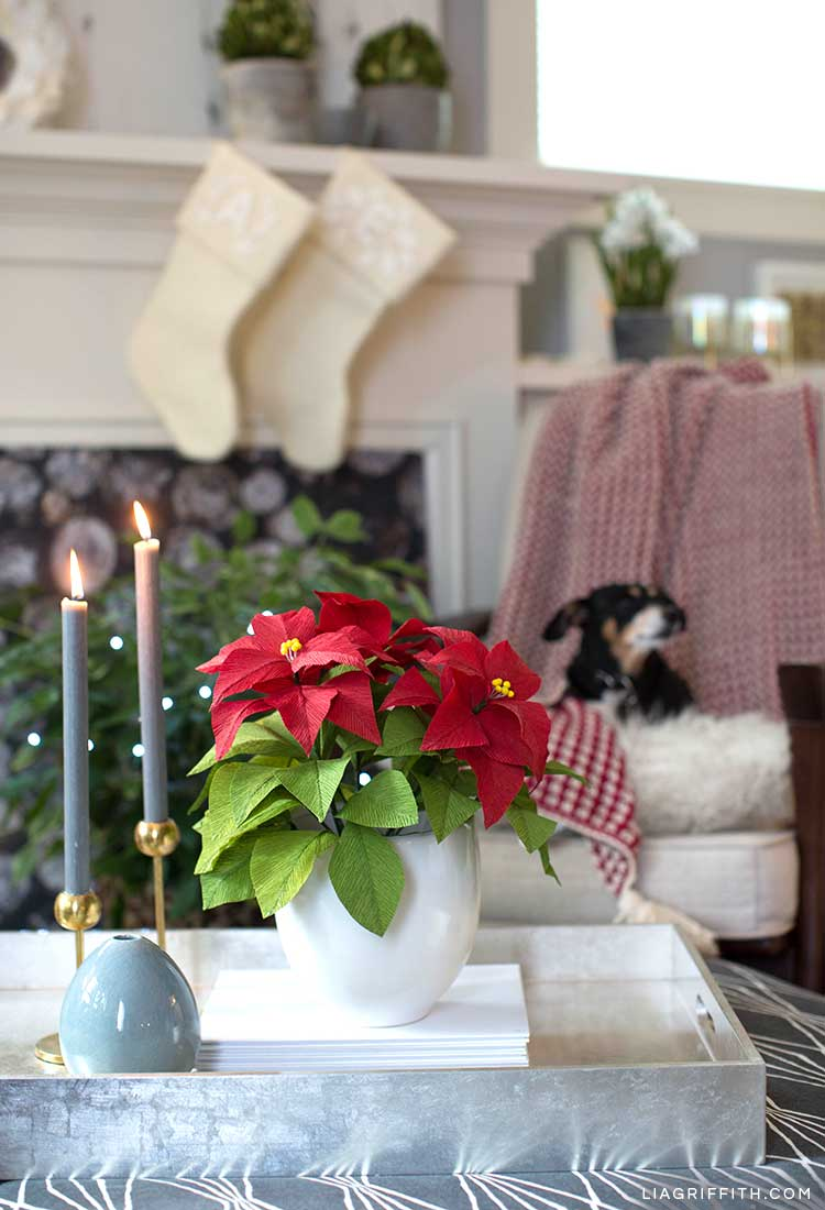 Red crepe paper poinsettia plant on tray next to candles and in front of fireplace with dog in background