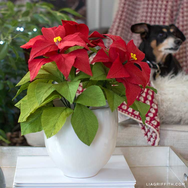 Heavy Crepe Paper Poinsettia Plant For The Holiday Season Lia Griffith