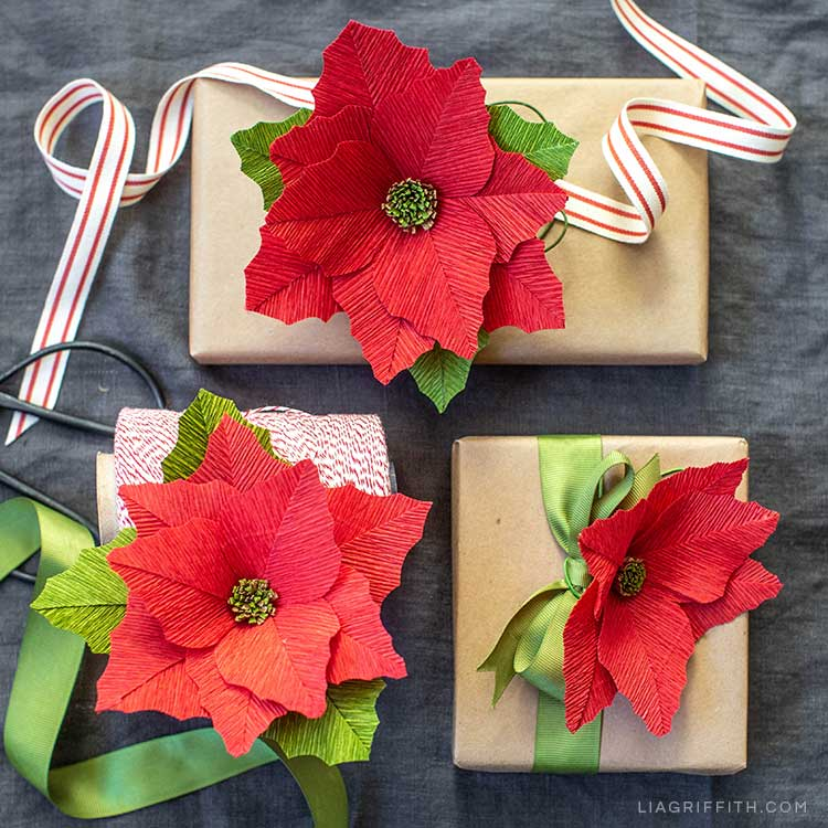 Video Tutorial Heavy Crepe Paper Poinsettia Starter Pattern Lia