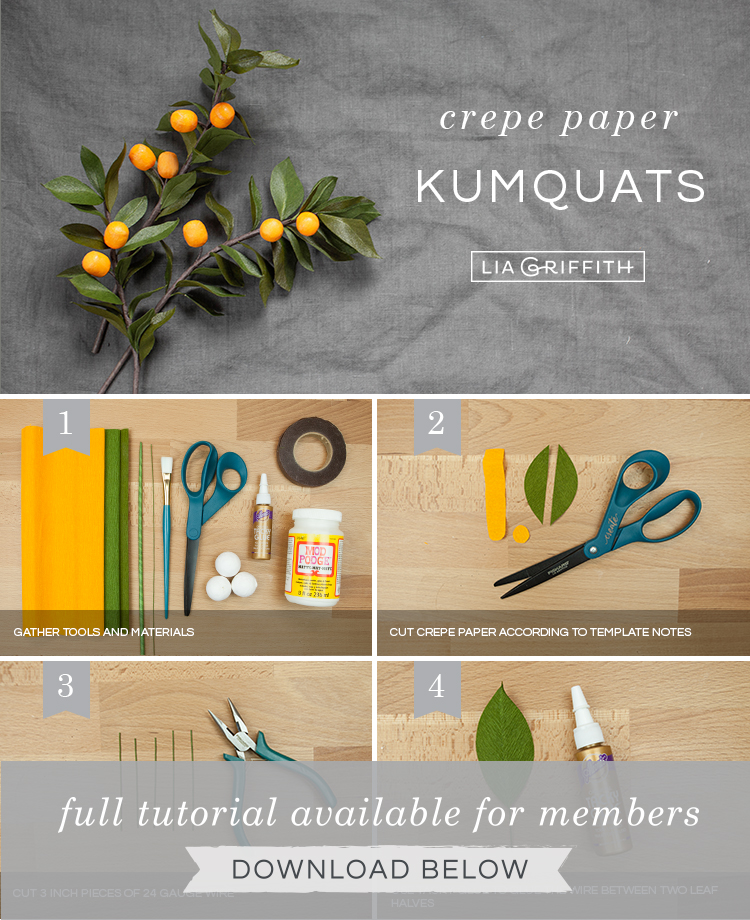 Photo tutorial for crepe paper kumquat branches by Lia Griffith