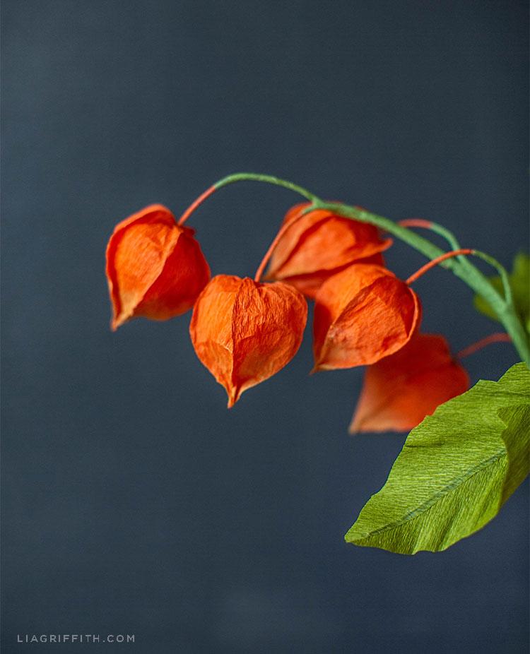 crepe paper Chinese lantern flowers