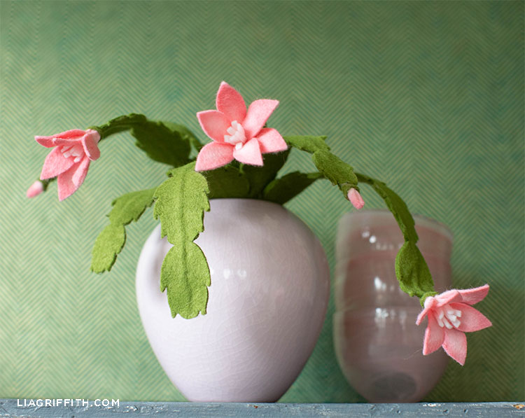 felt holiday cactus blooming with pink flowers in pink pot next to pink bowls