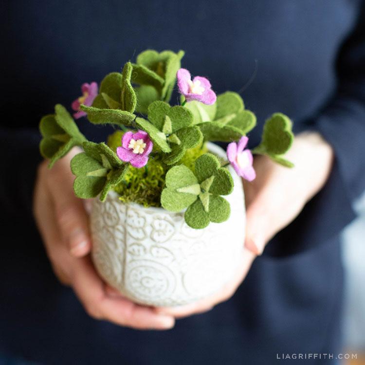 hands holding felt clover plant in white pot