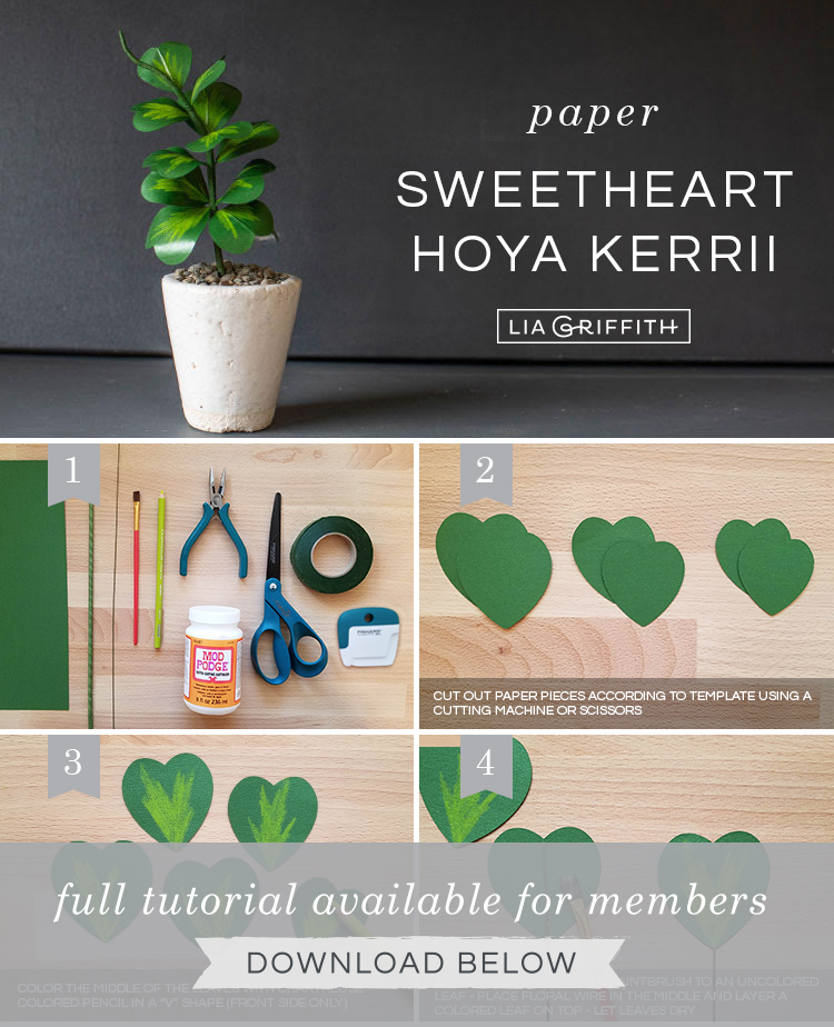 Photo tutorial for paper Hoya Kerrii plant (sweetheart plant) by Lia Griffith