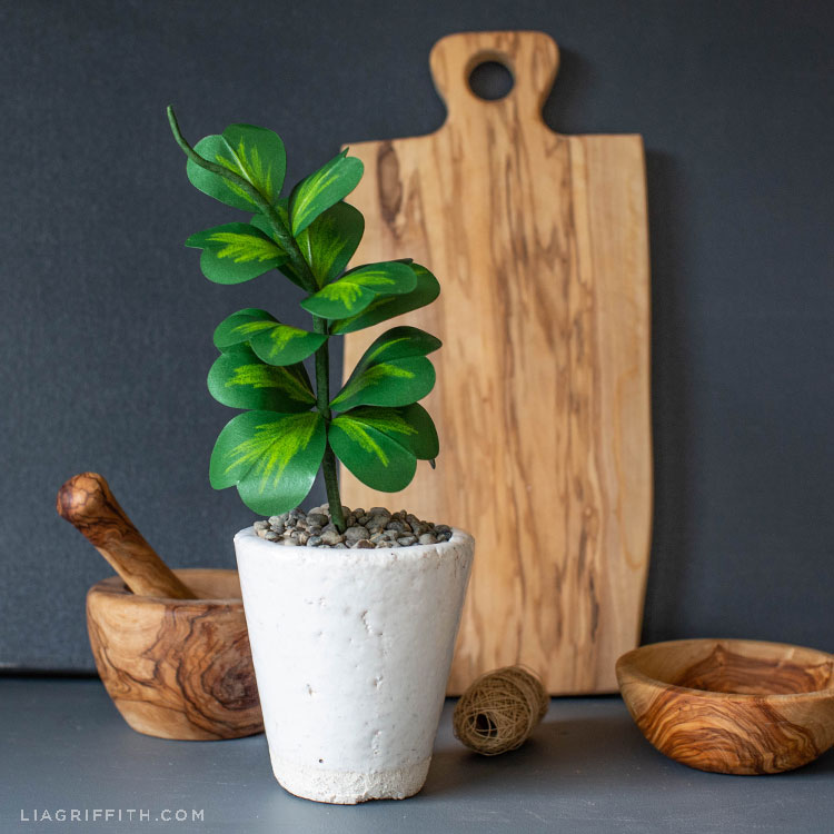DIY paper Hoya Kerrii plant