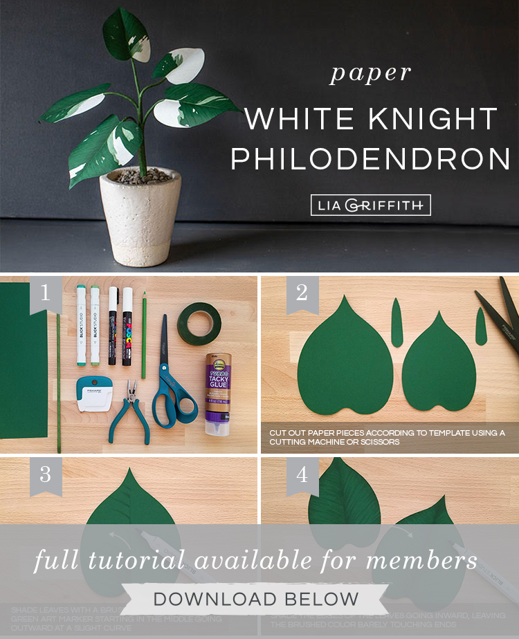 Photo tutorial for paper White Knight Philodendron by Lia Griffith