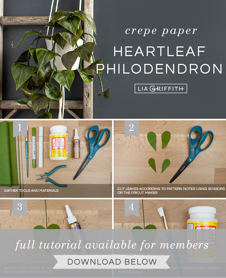 DIY photo tutorial for crepe paper heartleaf philodendron by Lia Griffith