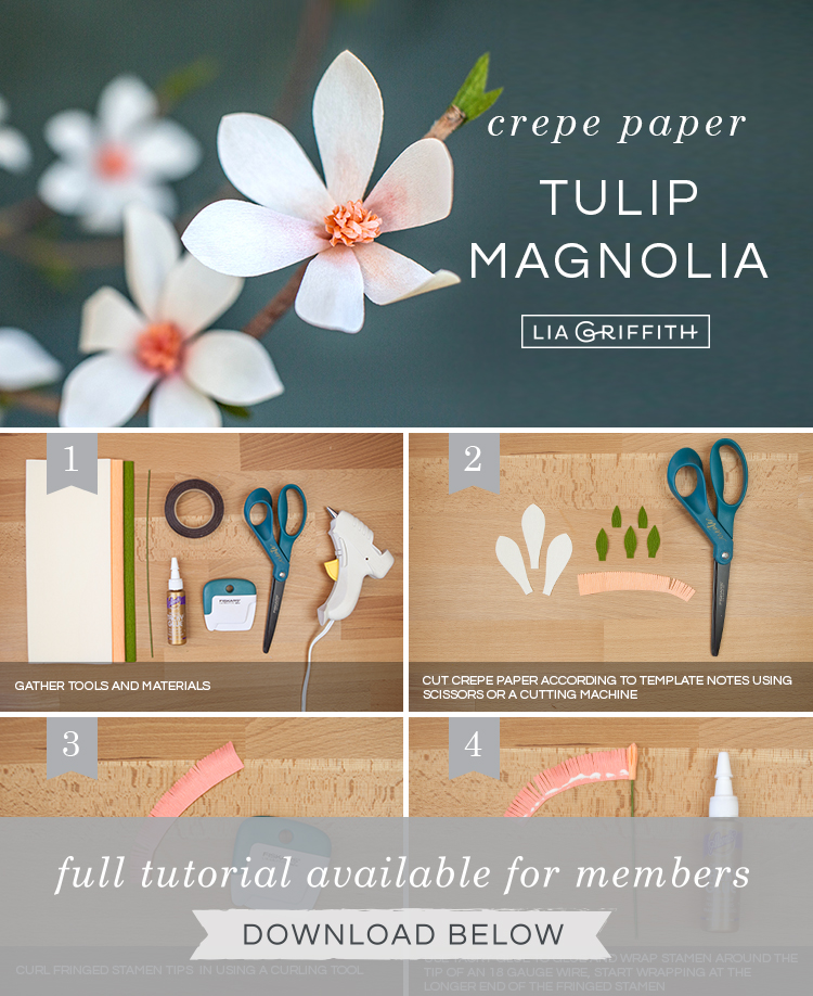 DIY step by step photo tutorial for crepe paper tulip magnolia branch by Lia Griffith