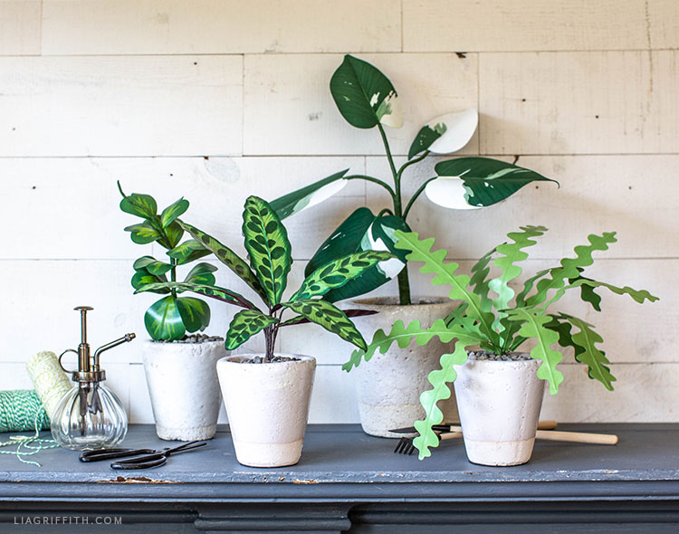 paper plants for your home