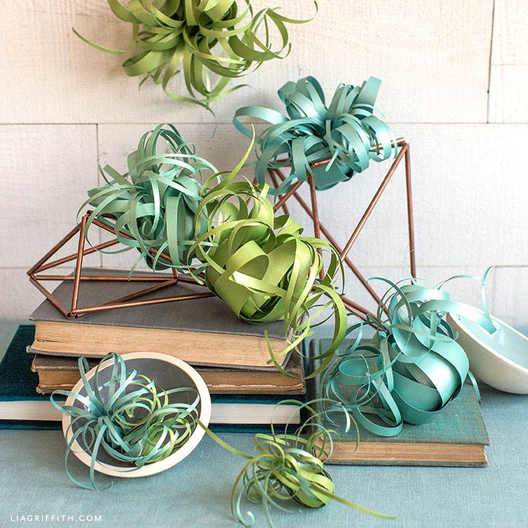 paper air plants with geometric decor on books