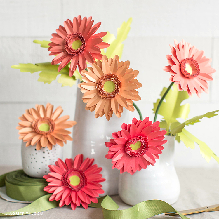 frosted paper daisies by Lia Griffith