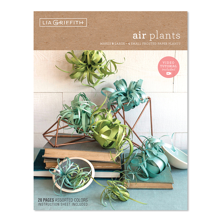 frosted paper air plants kit by Lia Griffith