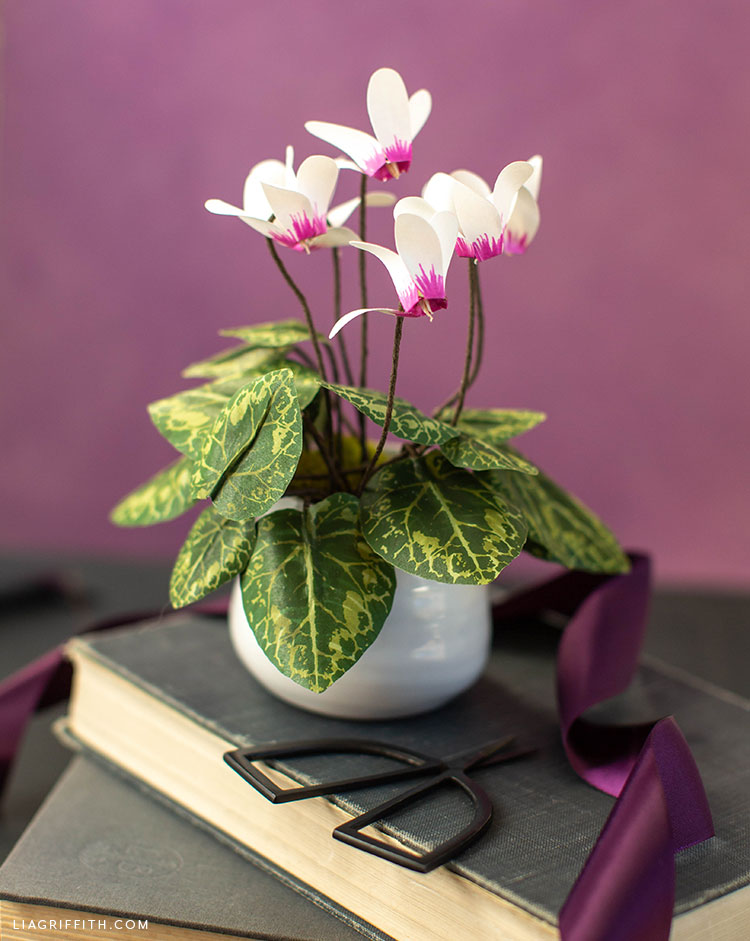 paper cyclamen plant in pot on book against purple background