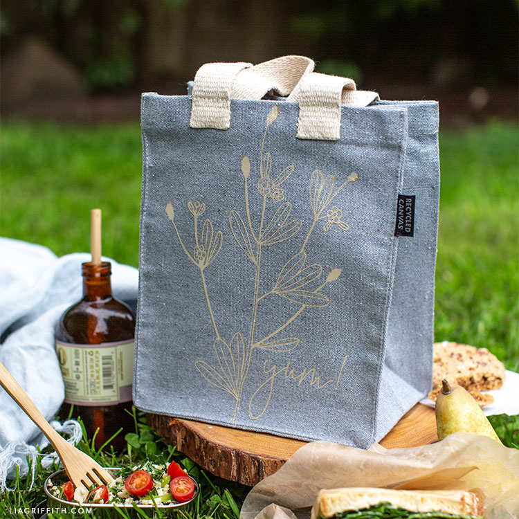 DIY lunch bag outdoors with food and drink