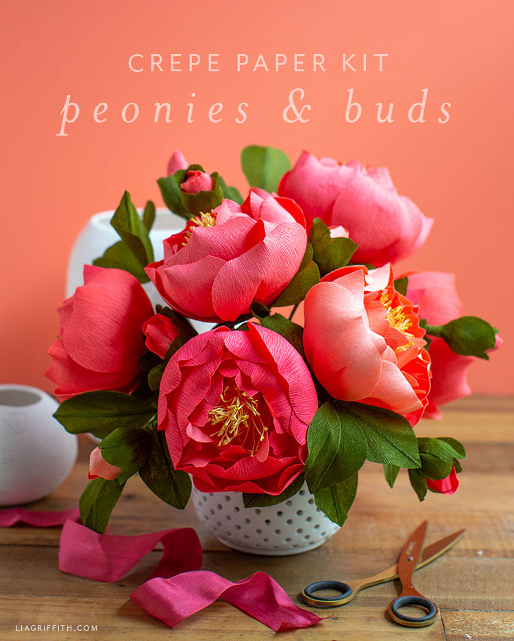 Video Tutorial Crepe Paper Peony Flower Kit Lia Griffith