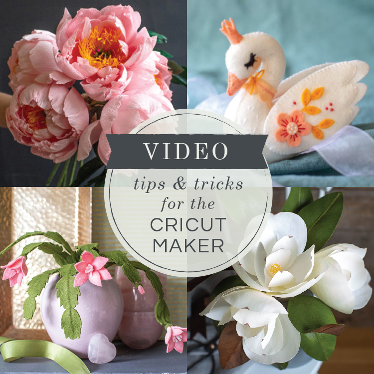 Live Video How To Use A Cricut Maker Lia Griffith