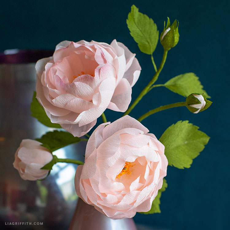 close-up of pink crepe paper heirloom roses