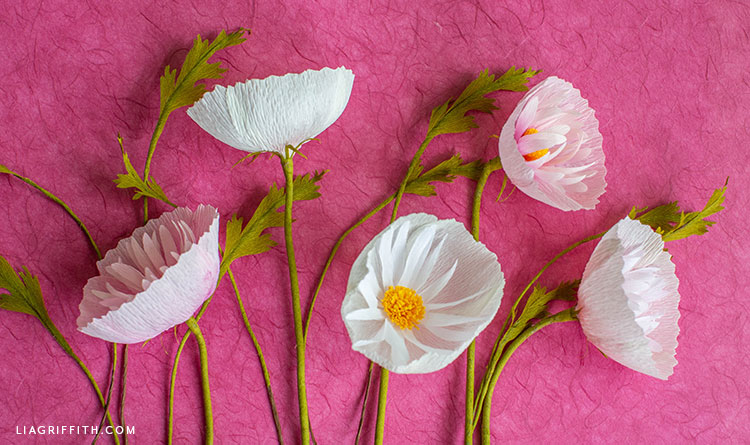 cosmos cupcake flowers made from crepe paper